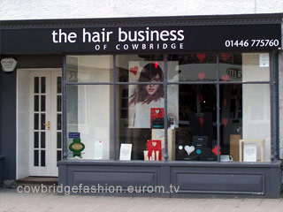 The Hair Business