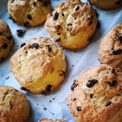 Elephant and Bun Cowbridge Scones